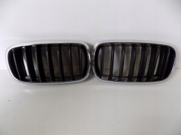 BMW X5 F15 Kidneys / Bumper Grill - 3818